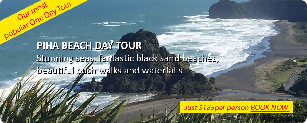 New Zealand Auckland Guided Beach Tours of Piha and Waitakere Ranges