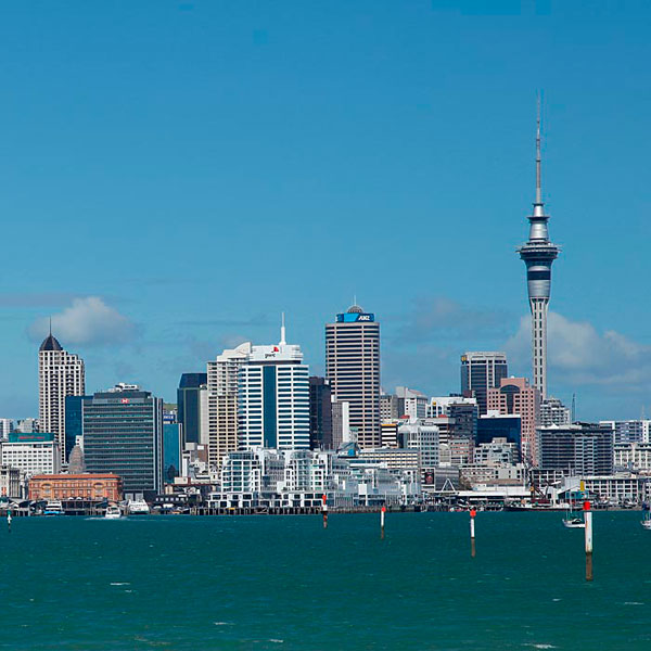 Auckland City 3 Hour Tour