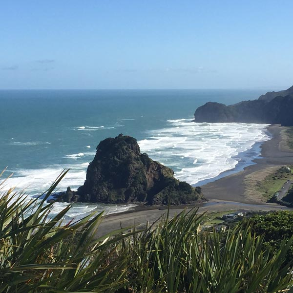 Piha Beach Day Tour